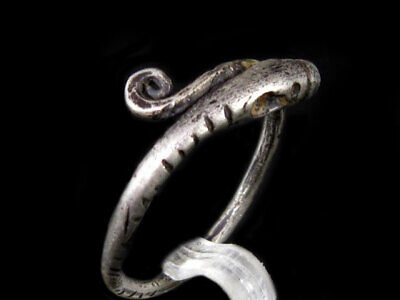 Extremely Rare Roman Silver Snake Ring, Top Condition, As Found+++