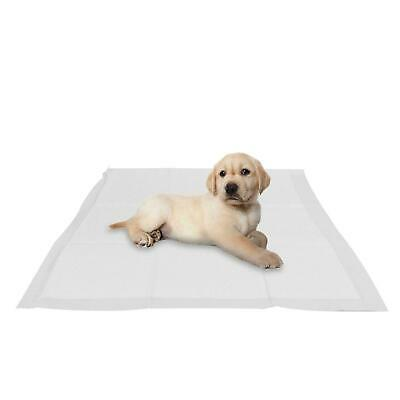10pc Pet Dog Puppy Toilet House Training Pads Odour Eliminating Absorbent layer