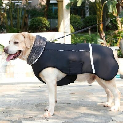 Winter Dog Jacket Warm Coat Waterproof Outdoor Small Medium Large Pet Clothes