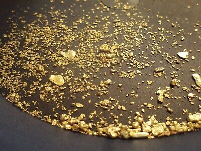 2+ Pounds of Idaho Gold Panning Paydirt - Fines - Pickers - Nuggets - AU !!!
