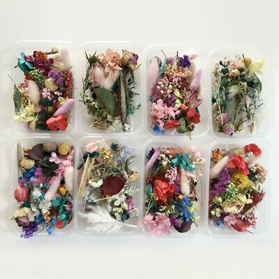 1 Box Real Preserved Mixed Dried Flower DIY Candle Resin Jewelry Art Craft Decor