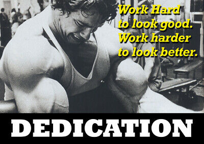 Motivational Arnold Schwarzenegger poster - Body Builder quotes #31 - A3