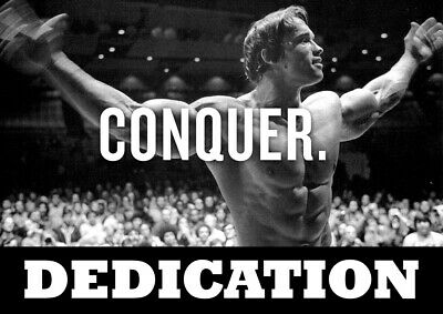 Motivational Arnold Schwarzenegger poster - Body Builder quotes #32 - A3