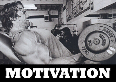 Motivational Poster Arnold Schwarzenegger - Body Builder quotes #34 - A3