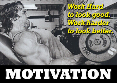 Motivational Poster Arnold Schwarzenegger - Body Builder quotes #37 - A3