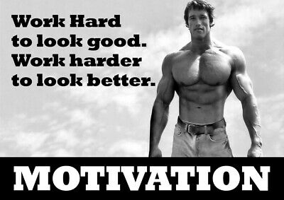 Motivational Poster Arnold Schwarzenegger - Body Builder quotes #38 - A3