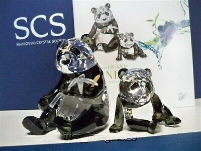 Swarovski Scs 2008 Annual Edition Pandas ( Mother & Baby ) Nib Coa