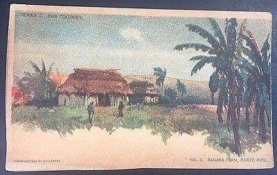Vintage Postcard W.R. Hearst Series C Our Colonies Banana Farm Porto Rico  C 9