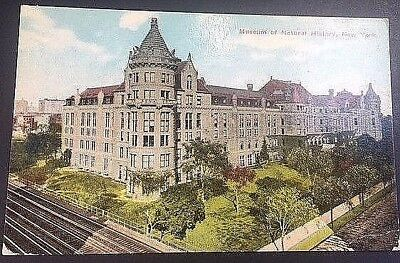 Vintage Postcard Museum Of Natural History New York  C15