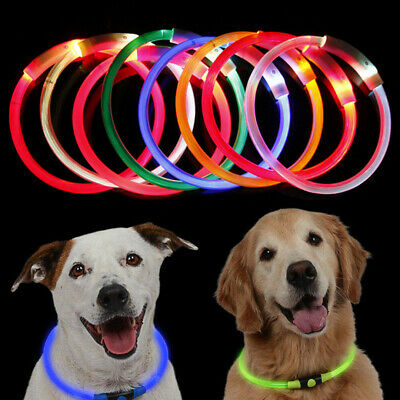 USB Rechargeable Pet Dog Collar LED Flashing LightUp Safety Waterproof Belt 70cm