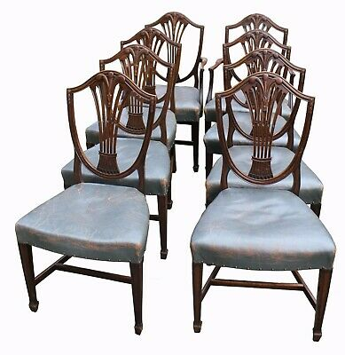 A Superb set of Eight Victorian Mahogany Shield Back Dining Chairs