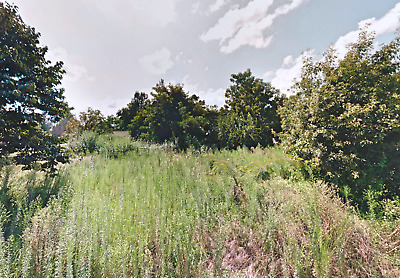 Residential Land For Sale!!  Clay County Arkansas (Est Market Value $4500)