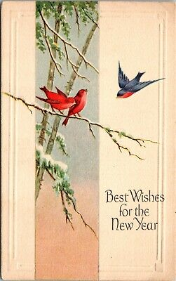 Antique Vintage BEST WISHES FOR THE NEW YEAR Postcard Birds Embossed