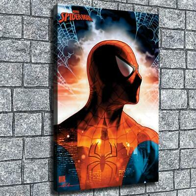 "12""x18"" Translucent Spiderman HD on Canvas Home Decor Room Wall Art paints photo"