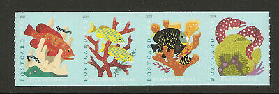 US Coral Reefs Forever Postcard Rate coil strip of 4 in Scott order 5367-5370