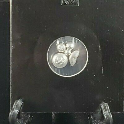 2g .9999 silver shot. In a flip. Pure Royal Canadian Mint silver.