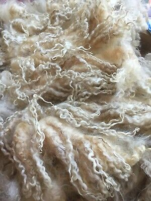 100g Beautifully Soft Masham Sheep Fleece/fibre. Spinning, Needle Felting