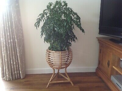 Vintage 1970s  bamboo plant stand