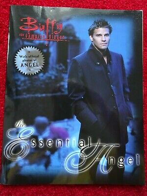 Buffy the Vampire Slayer Angel Picture Book RARE