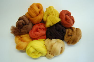 Brown Merino Wool roving / tops- 10 russet hues wet & needle felting / spinning