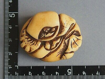 19th century antique netsuke shells and crab stag antler