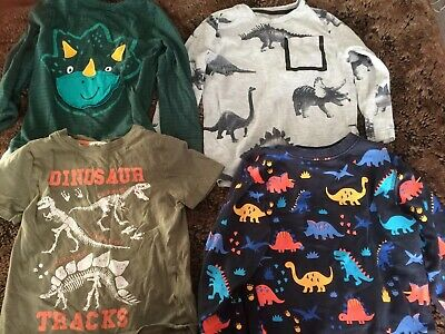Boys Dinosaur Top Bundle 4-5