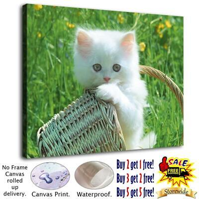 """12""""x16""""cute cat HD Canvas prints Painting Home Decor Picture Room Wall art"""