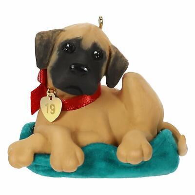 Hallmark Keepsake Christmas Ornament 2019 Year Dated Puppy Love Dane Dog
