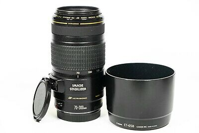 Canon EF 70-300mm F/4-5.6 IS USM Lens with lens hood