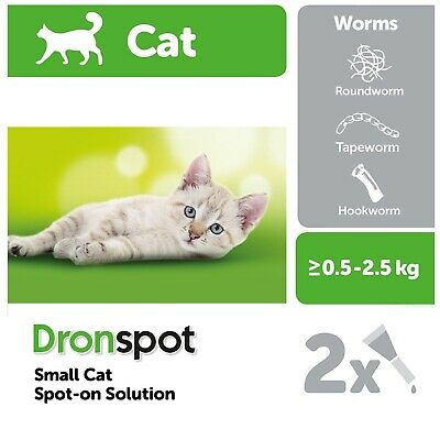 Nouveau !!! Bayer Dronspot Vermifuge Spot-On 1 Pipette Petits Chats & Chatons