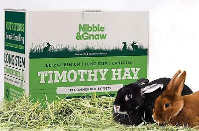 Premium health enhancing Timothy Hay for Rabbits - 2nd Cut - Nibble and Gnaw