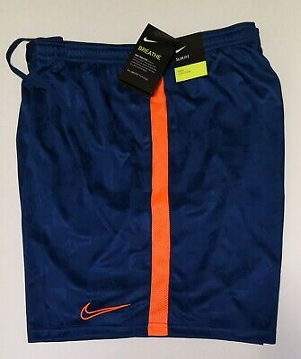 Nike Mens Dri Fit Block Training Shorts AA4981