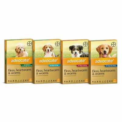 Advocate For Dogs - Puppy, Small, Medium, Large - 3 Pack-  ALL SIZES