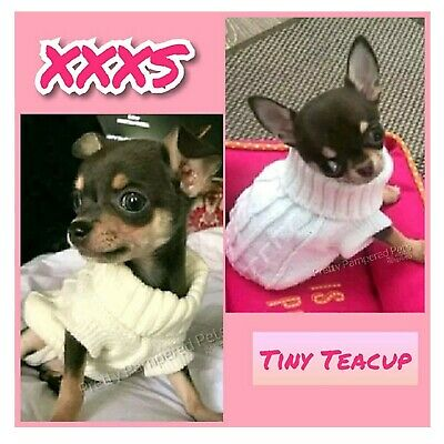 XXXS PUPPY Chihuahua Clothes Dog Coat Teacup Size White Knit Pet jumper also xxs