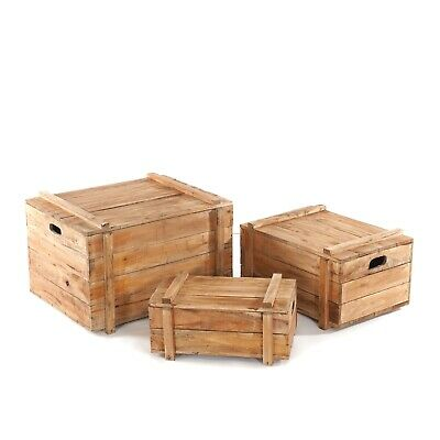 "TRUNK SET ""YOYA"" 