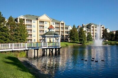 Sheraton Vistana Resort Fountains, 2 Bed Annual, Week 46, Timeshare For Sale!!!