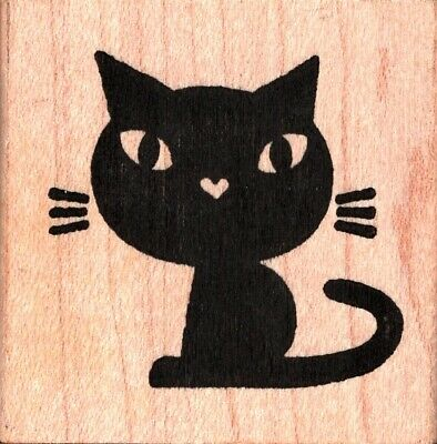 Halloween Witch Selfie Rubber Stamp with Black Cat K29307 WM