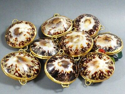 lot of 9 Pearly Cowry Sea Shell Brass Hinged Snuff Pill coin ring Trinket Box