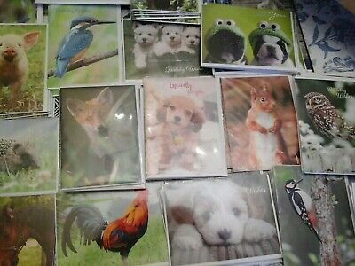 55 Lovely Animal Cards, Wholesale Joblot Greeting Cards