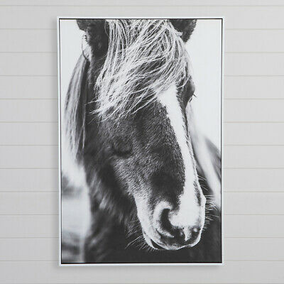 New MUSE Monte Black Wall Art
