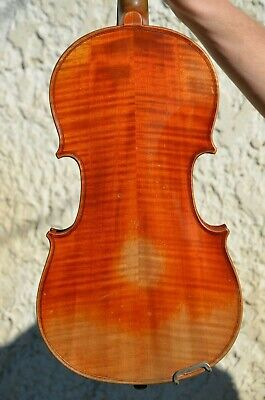 Old French violin DOMIMCUS MONTAGNANA 1746 label (3/4)