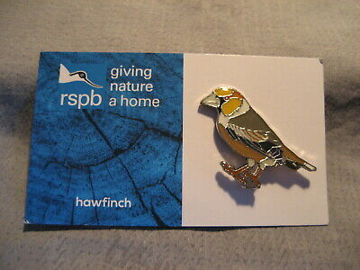"""NEW DESIGN CARD /""""RSPB HAWFINCH/"""" Pin Badge VGC FREE POST//SAME DAY DISPATCH !"""