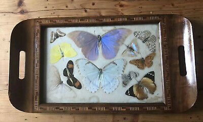 Vintage  1930s Wooden Butterfly Tray