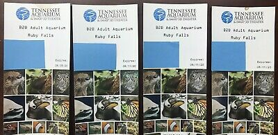 Tennessee Aquarium and Ruby Falls Adult Tickets (4)