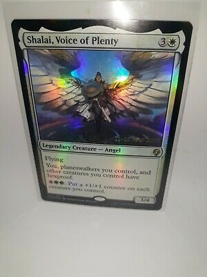 Shalai Voice of Plenty x1 Magic the Gathering 1x Dominaria mtg card