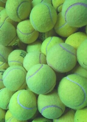 Used Tennis Balls : 4 6 8 or 10 : All Branded Balls : Great For Dog Toy / Games