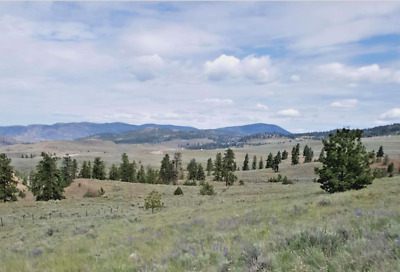 20.85 Acres Tonasket Washington Trees View Grassland 6 Miles From Town