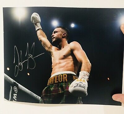 Signed Boxer Josh Taylor Photo