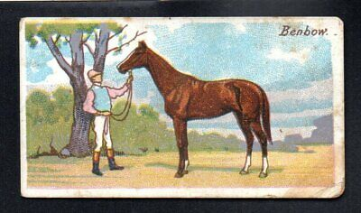 Benbow Colt 1906 Wills 'S Vice Regal Cigarettes Tobacco Horses Of Today #25 Good