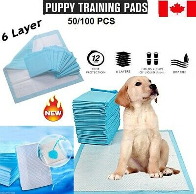 Puppy Pet Dog Indoor Cat Toilet Traning Pads Super Absorbent Easy Clean 60x60CM